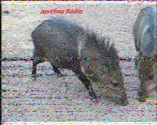 how to record on iphone javelina radio 6935 usb 0253 utc 5 jul 2015 17214